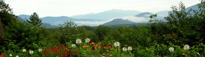 http://the1785inn.com/uploads/images/top_photo_700_195/summer_view.jpg